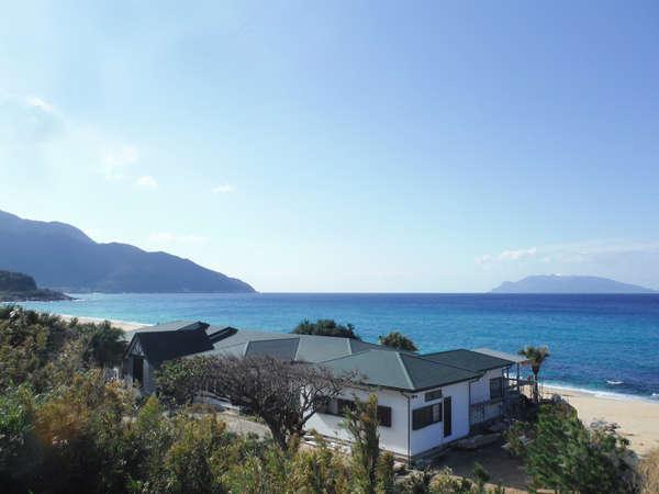 海亀がくる宿マリンブルー屋久島
