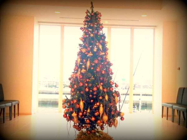 【Early Christmas】全室ハーバービュー&クリスマス菓子の特典付/1泊朝食プラン
