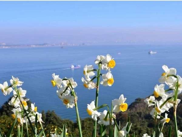 【島旅】フェリーで10分!お子様歓迎♪季節のお花や能古うどんを楽しみに島へGO! 入場券プレゼント付!