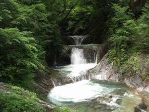 神秘的なエメラルドグリーンの七ツ釜五段の滝は必見☆