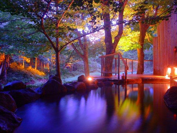 【川の湯「岩露天風呂」】※夜にはライトアップされた木々を見ながら温泉をご満喫頂けます