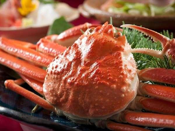 【蟹かにカニ】☆北陸の冬といえば☆人気のカニ料理がてんこ盛り!志賀の郷温泉満喫!蟹かにカニ膳♪