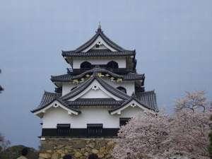 ひこにゃんに会えるかも!彦根城に行って井伊直弼を深く知ろう(彦根城入城整理券とひこにゃんグッズ付)