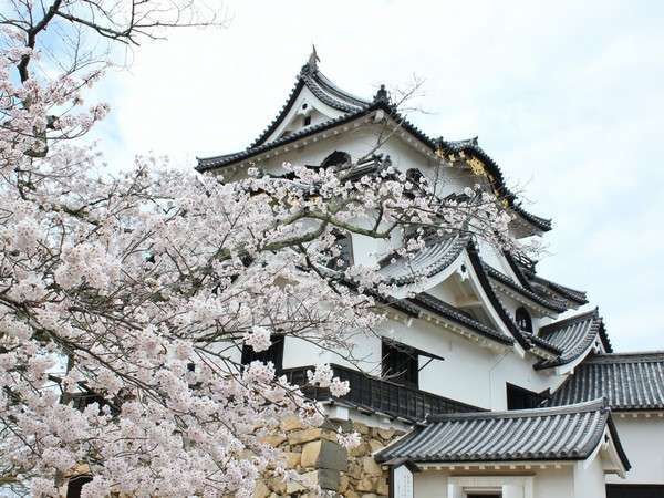 【ひこにゃんに会えるかも】彦根城入城券とひこにゃんグッズ付プラン◆旬の会席◆茶々の華