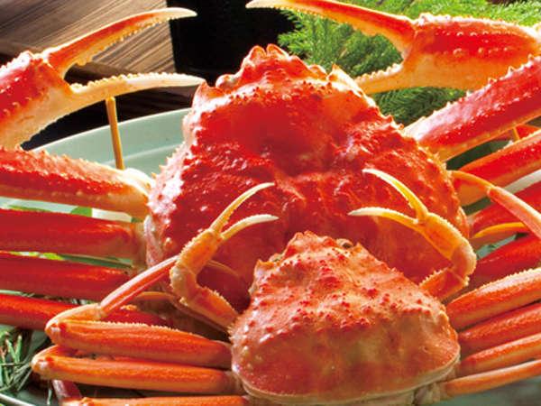 ズワイ、香箱蟹、紅ズワイ、毛蟹、4種のカニを思う存分、満喫しよう♪