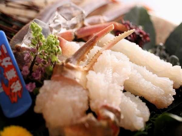 【冬】隠岐産タグ付き活松葉カニ刺し:タグ付松葉ガニを繊細な甘味を楽しめるカニ刺しで!