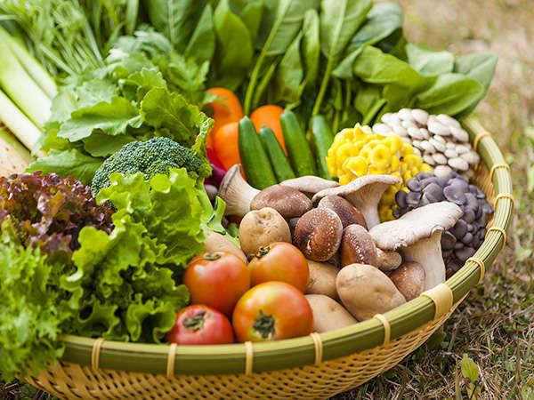 雫石産のお野菜を豊富に取り扱っています。