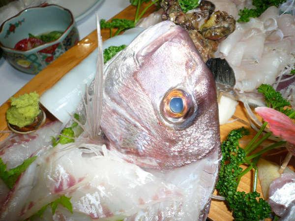 *【夕食一例】ドーンと豪快に!旬の若狭湾の海の幸を舟盛りで