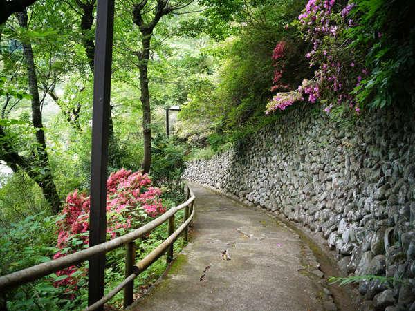 【素泊まり】緑に包まれた静かな環境で寛ぐ自由旅