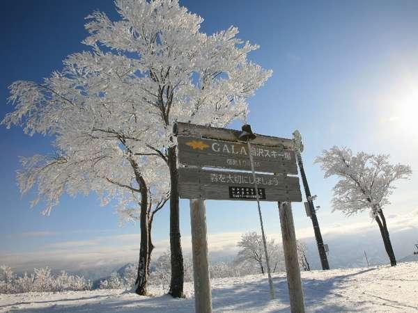 GALA湯沢スキー場 写真提供:じゃらんnet