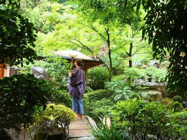 【贅沢ひとり旅】源泉かけ流しの湯と季節の懐石料理を愉しむ。