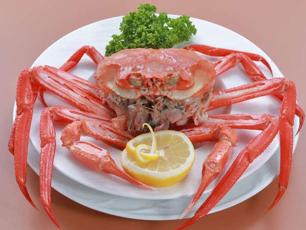 【9〜12月】≪厳選メニュー洋食≫お肉からお魚まで贅沢食材勢ぞろい!豪華厳選プラン