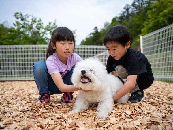 【プライベートエリア】専用ドッグランなら、安心してワンちゃんと一緒に遊べます♪「ゾーオン」一例