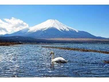 富士山と山中湖が目の前に広がる最高のロケーション。