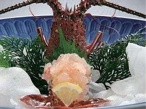 【遅い夏休みの◎得情報】なんと1万円〜で高級食材「伊勢海老」OR「アワビ」をチョイス