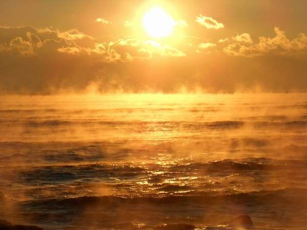 ウィンターセール 「輝く朝の海の季節」波打ち際の隠れ家へ