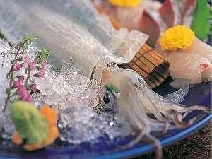 【イカ活き造りに佐賀牛に鮑♪】佐賀の美味しい食材満喫プラン!!