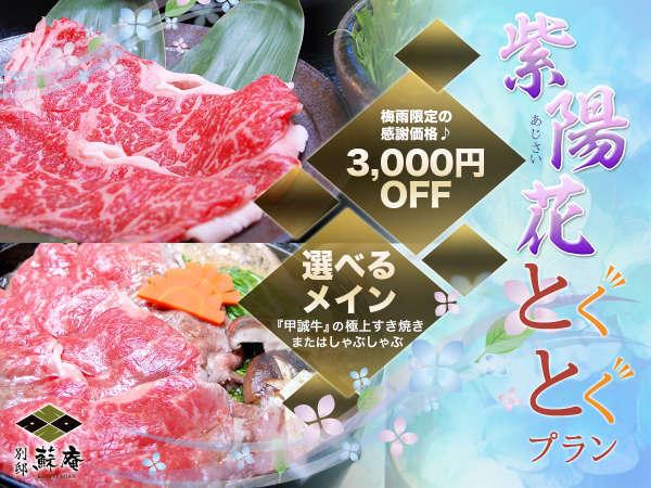 【紫陽花とくとくプラン♪】メインが選べてこの価格!ゆったり温泉につかって料理に舌鼓♪