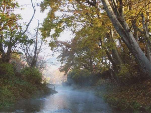釣りもお楽しみいただける川です。