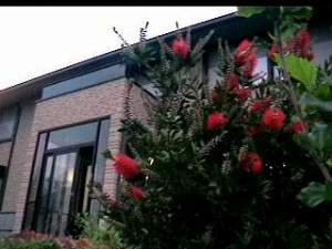 花と味のお宿 椿道旅館の外観