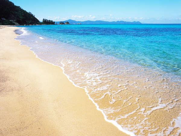 ≪水島海水浴場、水晶浜海水浴場 車で10分≫夏の思い出☆旬がたっぷり海鮮コース♪【じゃらん限定】