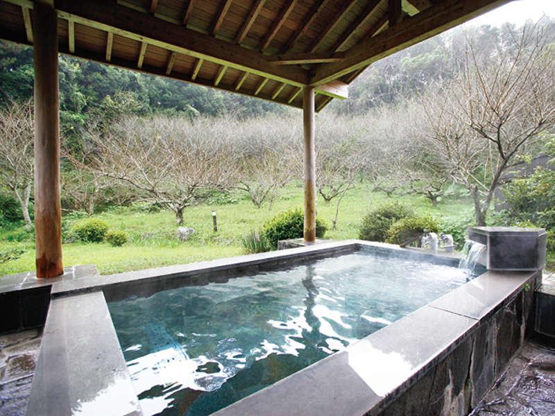 露天風呂では春には梅林も楽しめます