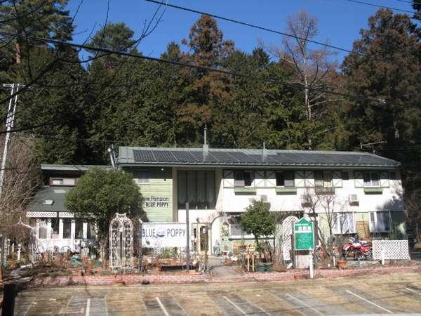 富士山 健康開運 猫と犬の宿 ペンションブルーポピー