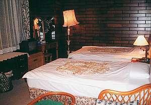 デラックスツイン。落ち着いた雰囲気の部屋。