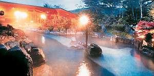 長野県白樺湖池の平ホテル