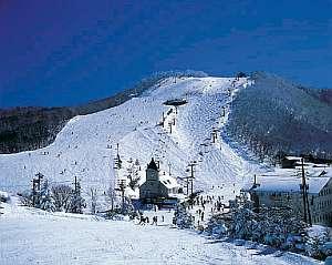 幕岩温泉 志賀の湯ホテル
