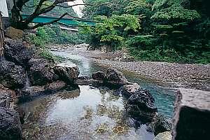 和歌山の紅葉スポット近くの温泉宿・紅葉露天のある宿県 下御殿