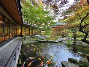 四季の移ろいを豊かに演出する日本庭園