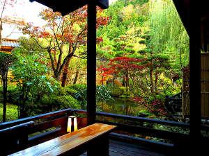 【紅葉】秋のたちばなやでは中庭の庭園が紅く彩りをみせます。