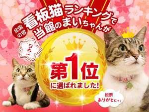 看板猫ランキング全国1位受賞記念!