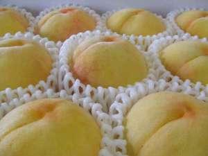 岡山の白桃も日本遺産に認定されました(^^)v総社市産の甘~い白桃をお土産にどうぞ!