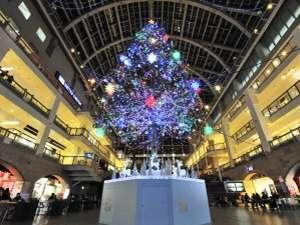 煌めく☆.:゜+。★大人のクリスマスツリー