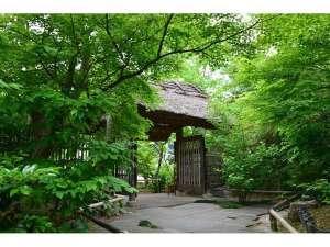 新緑の中にある茅葺の門