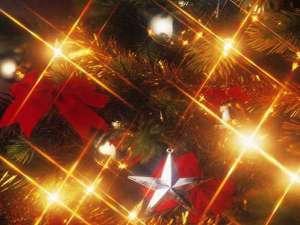 想い出に残る忘れられないクリスマスステイとなりますように…。