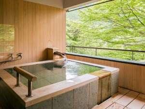 【佳松亭・迎賓室≪音-ON-≫】緑と光が美しい露天風呂