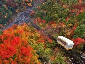 紅葉の祖谷渓谷をゆくケーブルカー。谷間に流れる祖谷川の横にせり出す源泉かけ流しの露天風呂