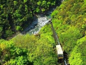 新緑の渓谷~鮮やかな渓谷の緑を愛でられるケーブルカー~