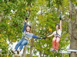 ジップライン 森の中を飛び回ろう!