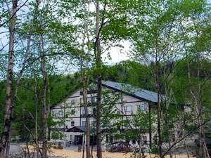 湧駒荘の周りは自然の森だけ!