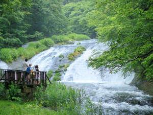 【釜淵の滝】高さ8.5m、幅30mの岩の上を清流が幾筋にも分かれ、滝壺に落ちていくさまは 爽快です。