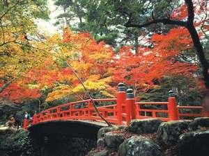 11月は紅葉が見頃。宮島へはホテル前桟橋から高速船で26分。