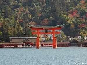 紅葉の美しい宮島まではホテルからダイレクトアクセス(26分)