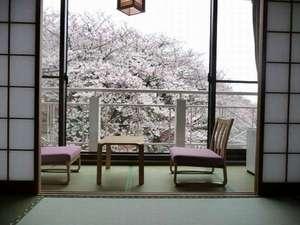 月の棟 和室10畳桜の時期がおすすめ♪