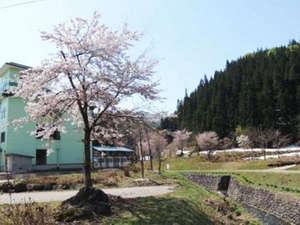南郷(夢)温泉 共林荘