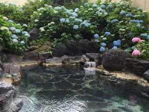 アジサイの露天風呂