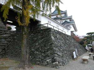 公孫樹と和歌山城